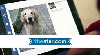 bob-puppy-star